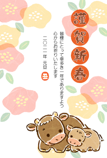 IM-g-CAS054A
