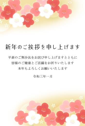 IMPN-006-098-06