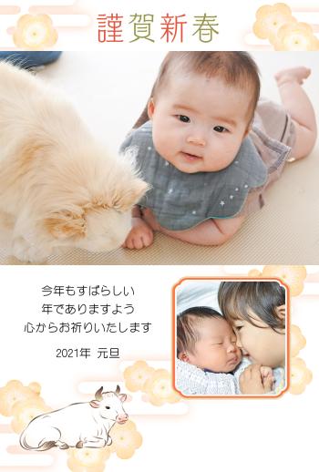 IMND-259_094-14