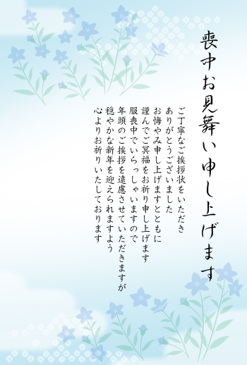 IMND-435_118-10